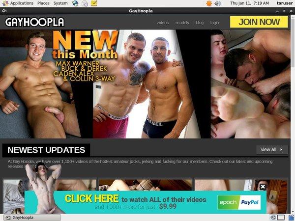 Gay Hoopla Subscription