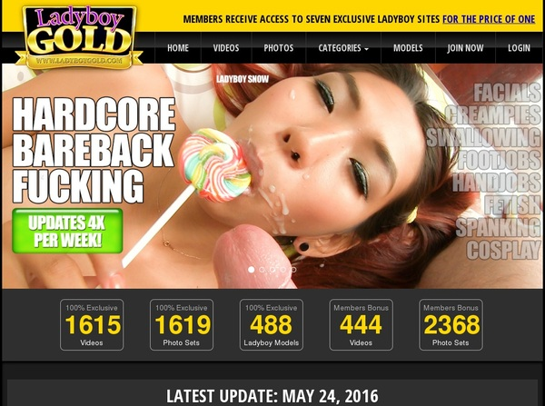 Ladyboy Gold Discount (up To 70%)